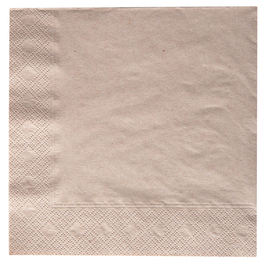 Bio-Towel 2 ply fold 1/4 nature 330 mm  x 330 mm 8 x 250 pieces product photo